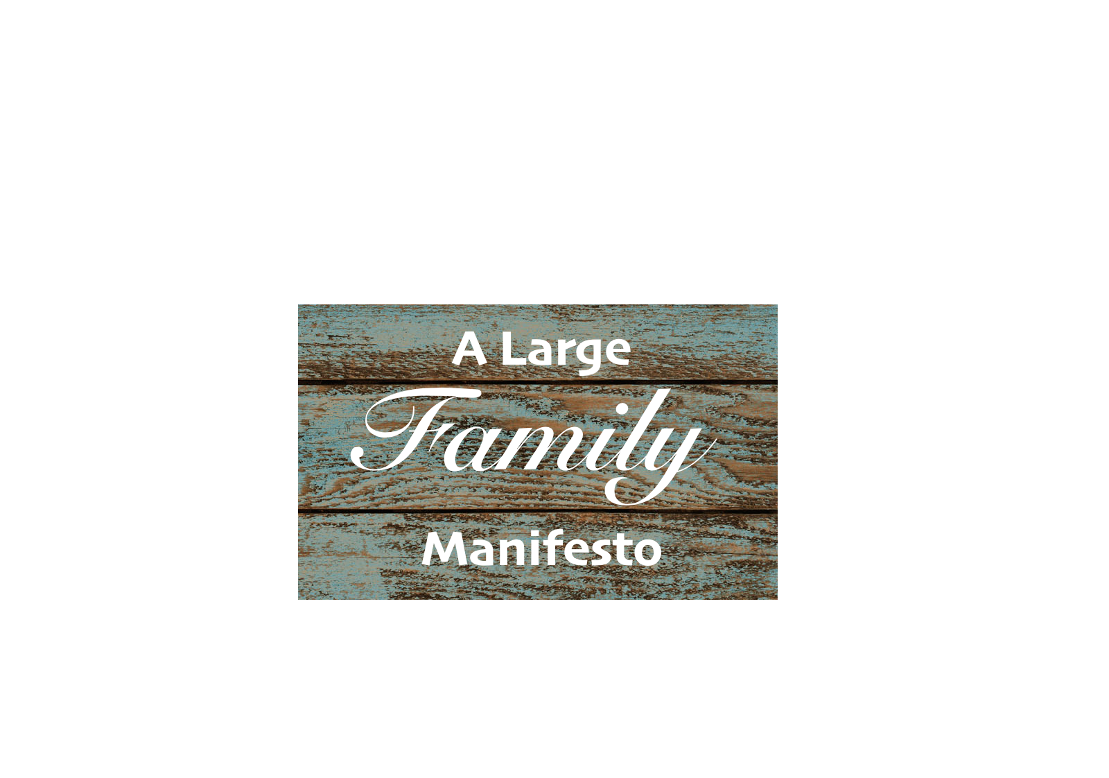 Large families are a society in miniature